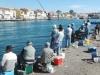 Pêche à la daurade