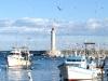 Chalutiers dans le port de Sète